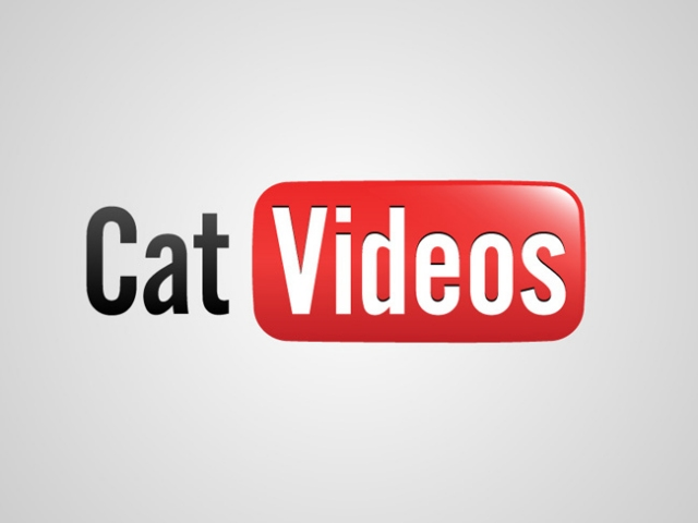 Welcome to our Cat Video Portal (image source unknown)